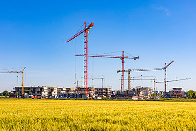 Germany, Baden-Wurttemberg, Holzgerlingen, Yellow grassy field with construction site in background - p300m2199606 by Werner Dieterich