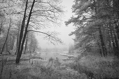 Landschaft in Russland - p1653m2232302 von Vladimir Proshin