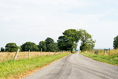 Country road in sunny day - p312m1164678 by Rebecca Wallin