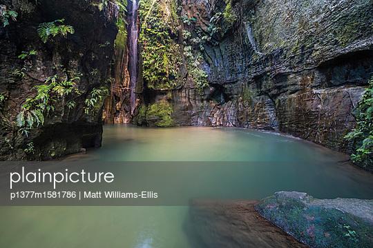 p1377m1581786 von Matt Williams-Ellis