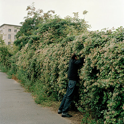 A man reaching into bushes - p3018928f by Andrej Glusgold