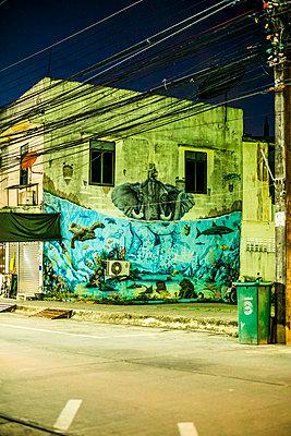 Grafitti on housewall - p680m1511668 by Stella Mai