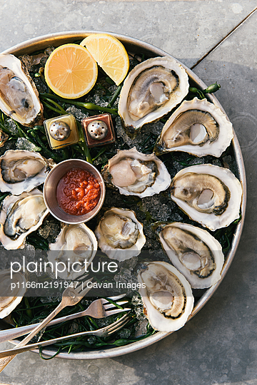 Large platter of shucked oysters in sunlight at outdoor restaurant - p1166m2191947 by Cavan Images