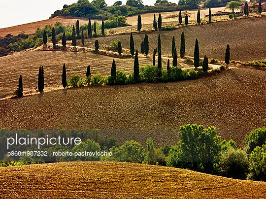 Tuscany, La Foce, Val d'Orcia - p968m987232 by roberto pastrovicchio