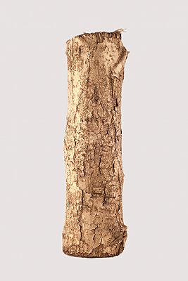Log - p1153m951556 by Michel Palourdiau