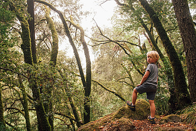 Boy in forest looking over shoulder at camera, Fairfax, California, USA, North America - p429m1504804 by JFCreatives