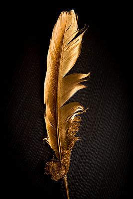 Goldene Feder - p451m1425216 von Anja Weber-Decker