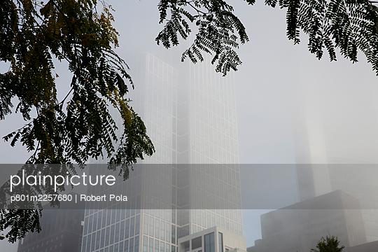 Germany, Hessen, Frankfurt, High rise buildings - p801m2257680 by Robert Pola