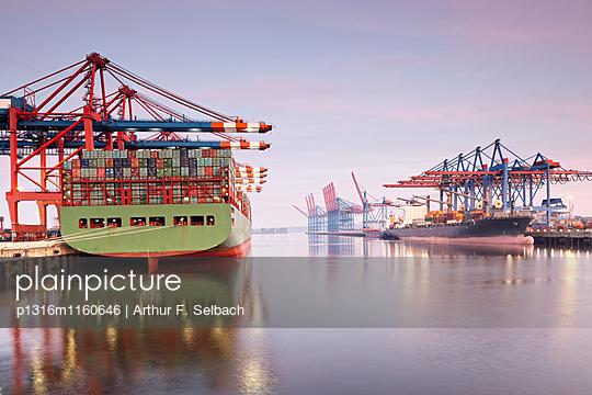 Container Schiffe im Waltershofer Hafen, Burchardkai und Eurogate , Hafen Hamburg, Hamburg, Deutschland - p1316m1160646 von Arthur F. Selbach
